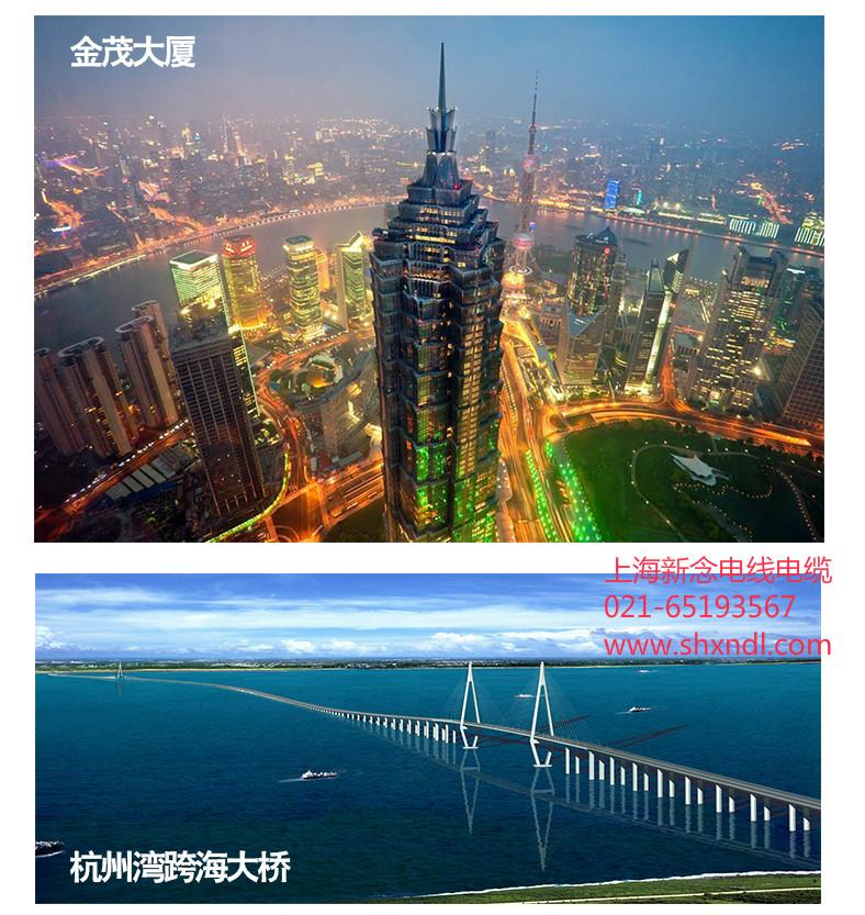 上海新念电线电缆总结高压输电技术和发展方向